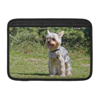 Yorkshire Terrier dog, yorkie macbook air sleeve