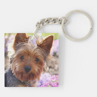 Yorkshire Terrier Double-Sided Square Acrylic Keychain