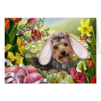 Yorkshire Terrier Easter Cards