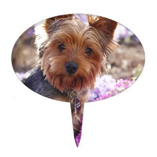 Yorkshire Terrier Figuras De Tarta