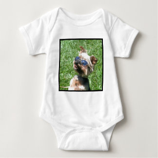 Yorkshire Terrier fresco Playeras