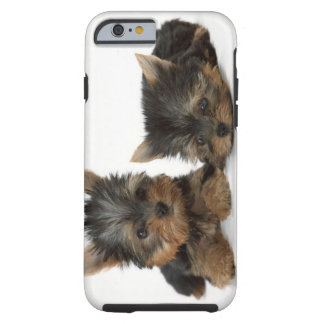 Yorkshire Terrier Funda Resistente iPhone 6