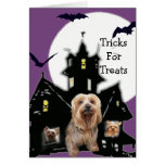 Yorkshire Terrier Halloween Greeting Card