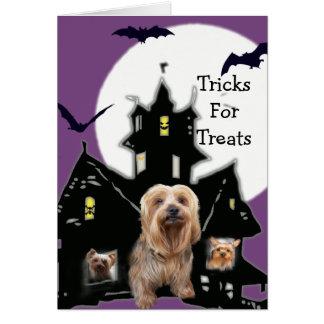 Yorkshire Terrier Halloween Greeting Card