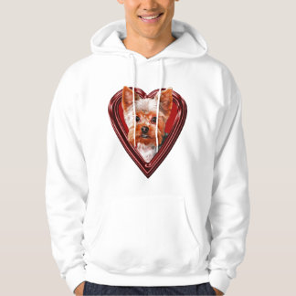 Yorkshire Terrier in Heart Hoodie