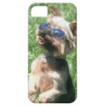 Yorkshire Terrier iPhone 5 Protectores