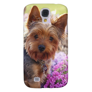 Yorkshire Terrier Iphone Case Galaxy S4 Case