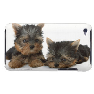 Yorkshire Terrier iPod Touch Case-Mate Cárcasa