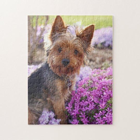 Yorkshire Terrier Jigsaw Puzzle | Zazzle.com