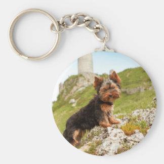 Yorkshire Terrier Keychains