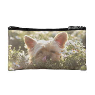 Yorkshire Terrier Laying in Sun licking lips Cosmetic Bag