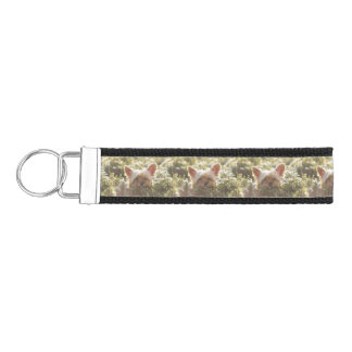 Yorkshire Terrier Laying in Sun licking lips Wrist Keychain