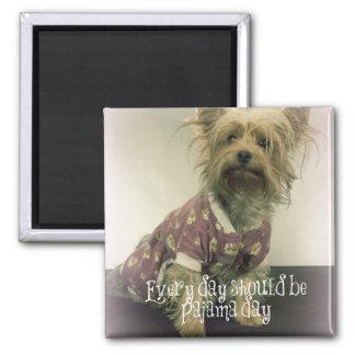 Yorkshire Terrier lindo en pijamas con cita Imán Cuadrado