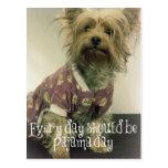Yorkshire Terrier lindo en pijamas con cita Tarjetas Postales