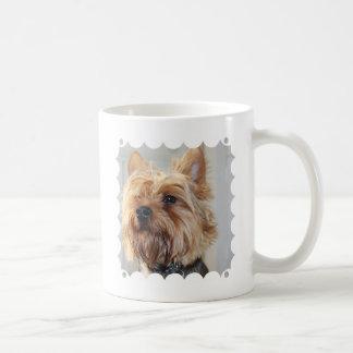Yorkshire Terrier lindo Tazas