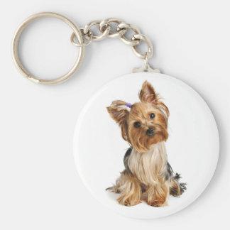 Yorkshire Terrier - llavero del perro de perrito d