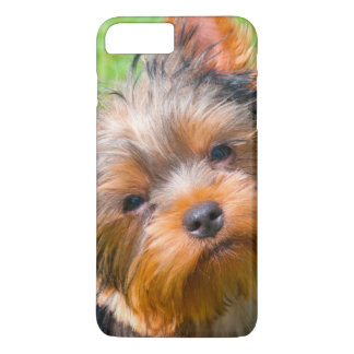 Yorkshire Terrier looking up iPhone 7 Plus Case