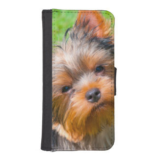 Yorkshire Terrier looking up Wallet Phone Case For iPhone SE/5/5s