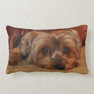 Yorkshire Terrier Lumbar  Pillow