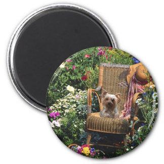 Yorkshire Terrier Magnet Garden
