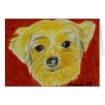 Yorkshire Terrier - Max Greeting Card