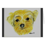 Yorkshire Terrier - Max Greeting Cards