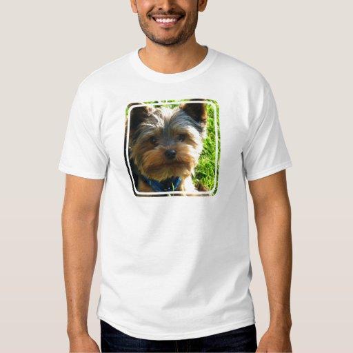 Yorkshire Terrier Men's T-Shirt