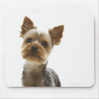 Yorkshire Terrier Mouse Pad