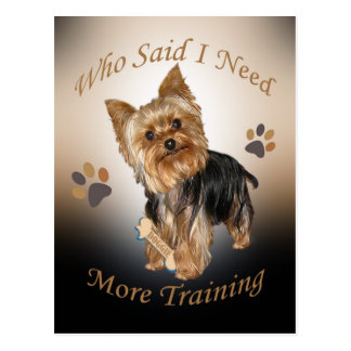 Yorkshire Terrier Needs Training Postcard