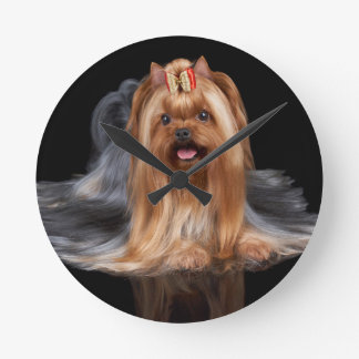 Yorkshire Terrier on black Round Clock