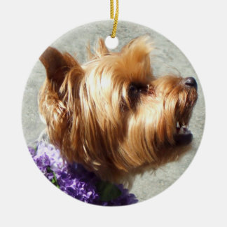 Yorkshire terrier ornament