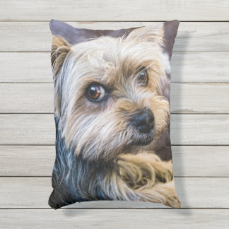 Yorkshire Terrier Outdoor Pillow