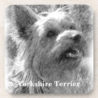 Yorkshire Terrier Pencil Drawing Coaster
