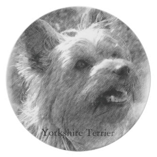 Yorkshire Terrier Pencil Drawing Dinner Plate
