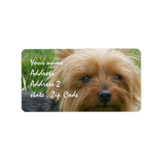 Yorkshire Terrier Personalized Address Label