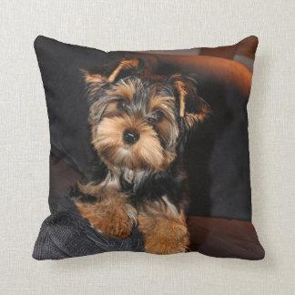 Yorkshire Terrier pillow