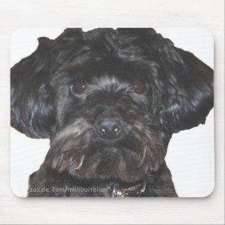 Yorkshire Terrier-Poodle Mix Mouse Pad