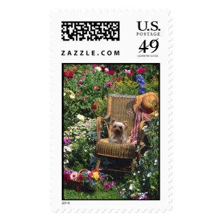 Yorkshire Terrier Postage Garden