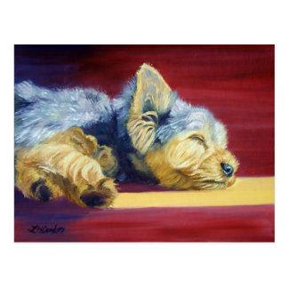 Yorkshire Terrier Postcard