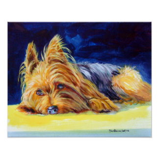 Yorkshire Terrier Print Poster