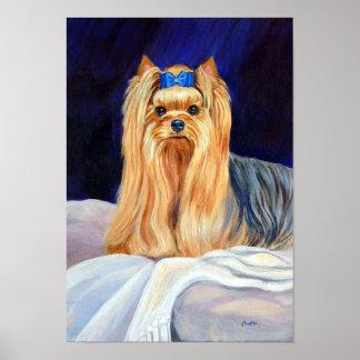 Yorkshire Terrier Print Poster