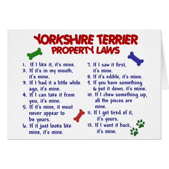 YORKSHIRE TERRIER Property Laws 2 Yorkie Card