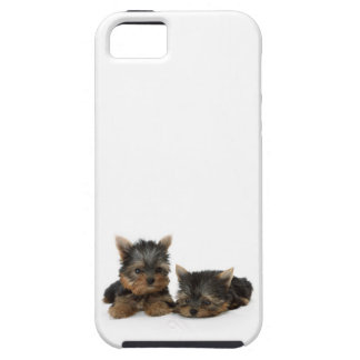 Yorkshire Terrier Puppies iPhone 5 Cases