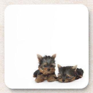 Yorkshire Terrier Puppies Cork Coaster