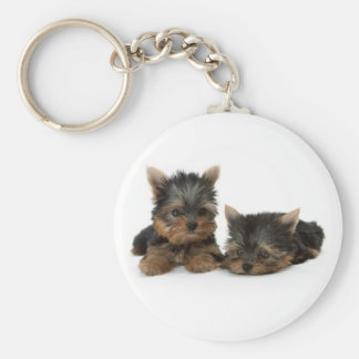 Yorkshire Terrier Puppies Keychain