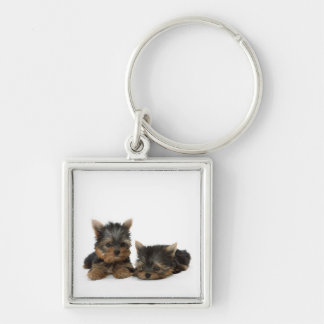 Yorkshire Terrier Puppies Premium Keychain