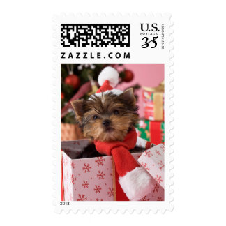 Yorkshire Terrier Puppy and Christmas 2 Postage