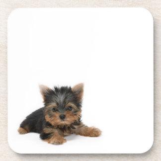 Yorkshire Terrier Puppy Cork Coaster