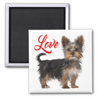 Yorkshire Terrier Puppy Dog Red Love Magnet