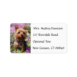 Yorkshire Terrier Puppy Name Address Mailing Label